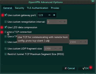 Setup a VPN On Kali Linux For Anonymity – ls /blog