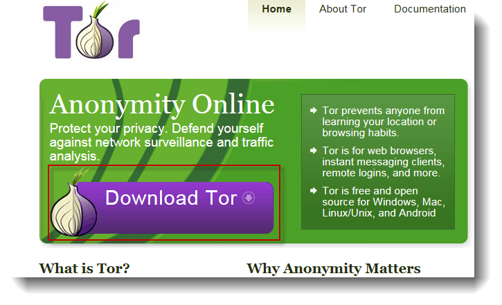 Forget VPN's for private browsing, get involved with TOR – ls /blog