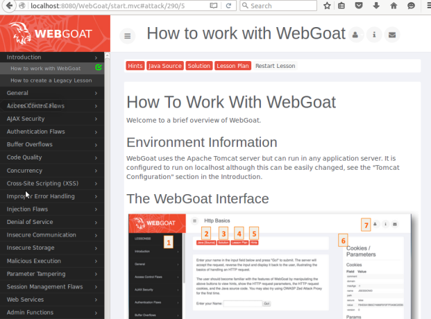 WebGoat's pentest lessons