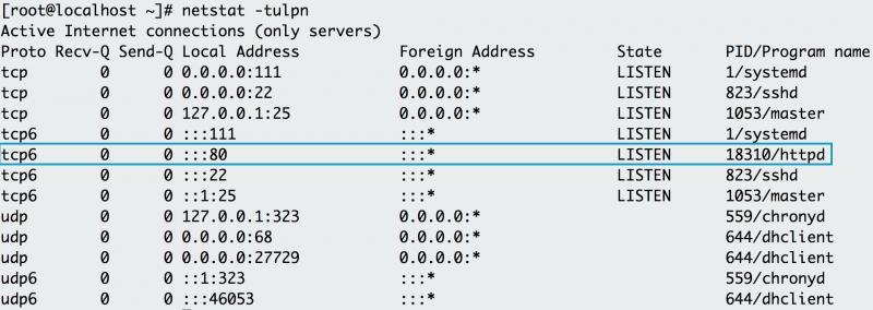 netstat verifies that Apache is running on port 80
